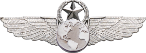 9640SW Star & Wreath Wing with Generic Emblem