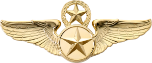 8890SW Star & Wreath Wing with Generic Emblem